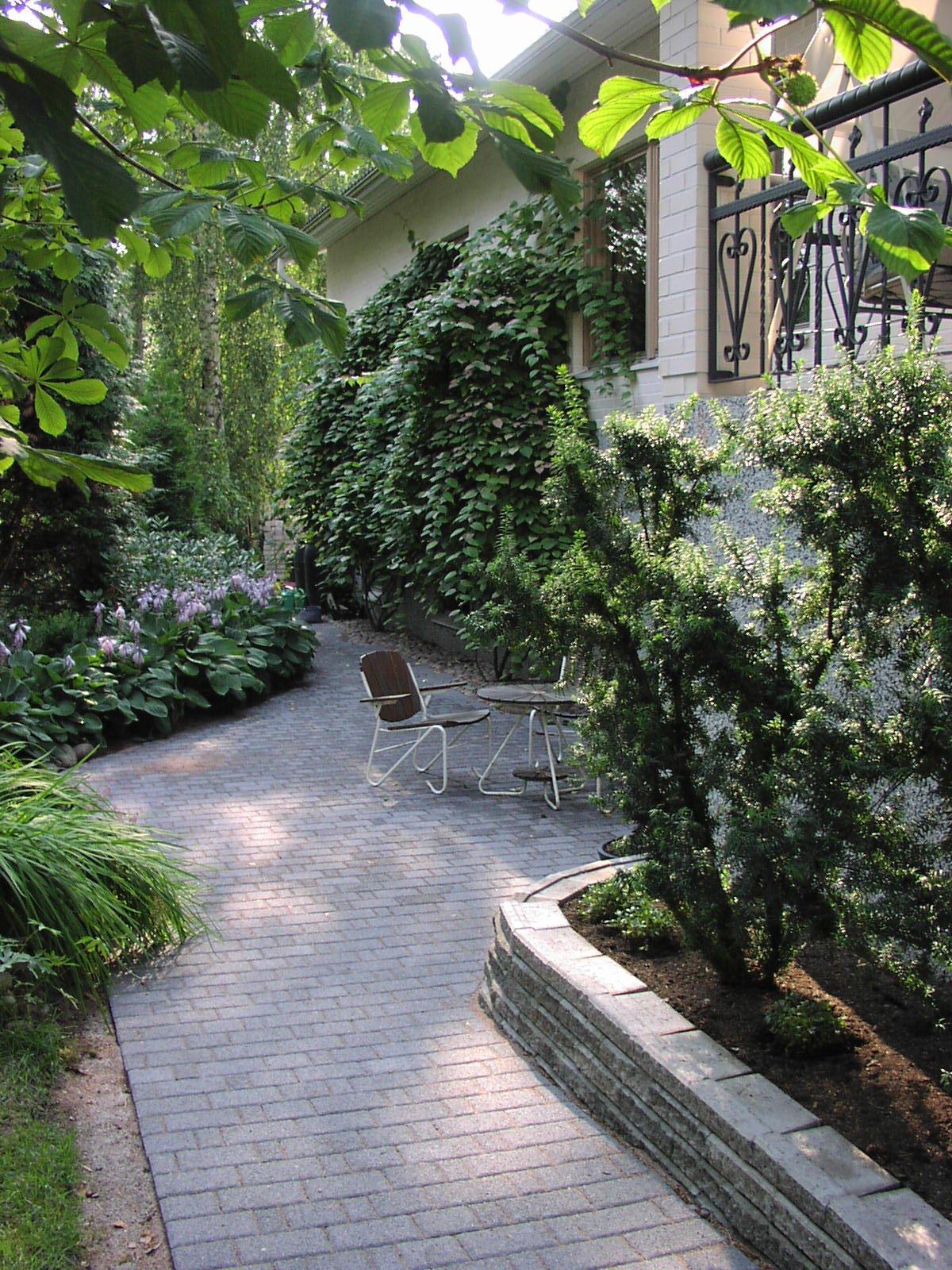 Marjatan ja mikon puutarhassa