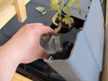 Happamuudensäätöaineen lisäys vesiviljelyastiaan