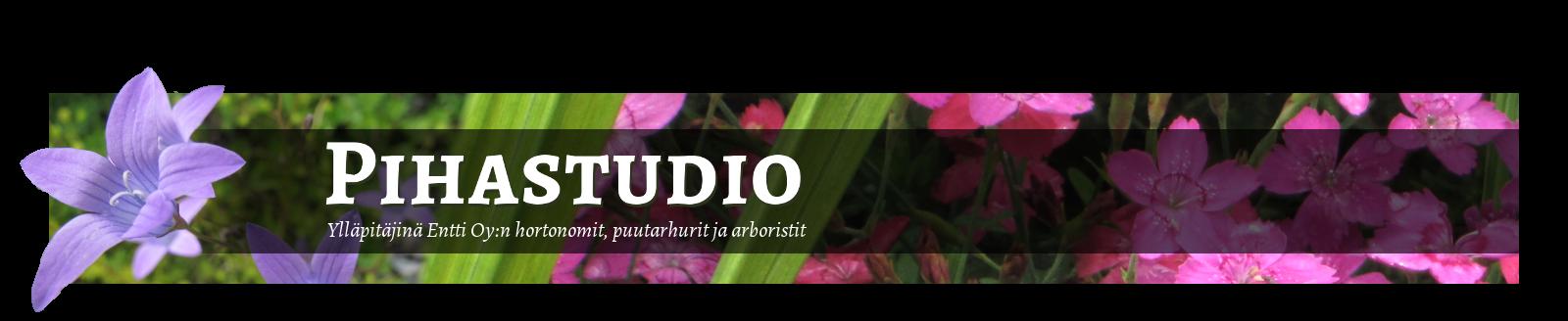 Pihastudio – puutarhablogi / Entti Oy